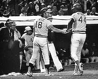 Oakland Athletics Willie McCovey congratulated at dugout by Gene Tenace. (1976 photo/Ron Riesterer)