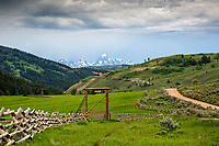 Jackson Hole ranch in the beautiful  Gros Ventre Valley east of town.  The Grand Tetons in the distance make a nice crown for the valley.