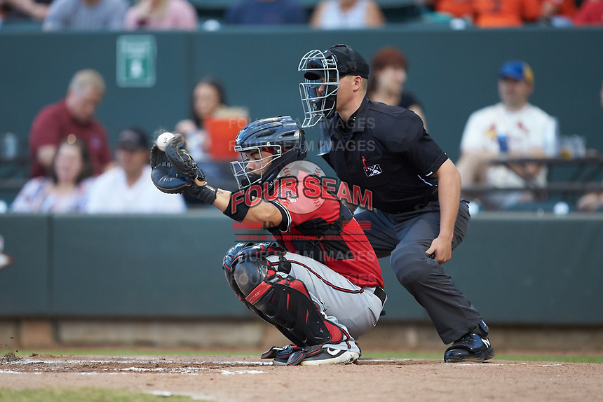 Carolina Mudcats catcher Mario Feliciano (4) sets a target as home plate umpire Steven Jaschinski looks on during the game against the Winston-Salem Dash at BB&T Ballpark on June 1, 2019 in Winston-Salem, North Carolina. The Dash defeated the Mudcats 5-4 in game two of a double header. (Brian Westerholt/Four Seam Images)