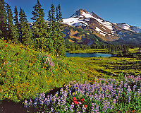 Mt Jefferson in Mt Jefferson Wilderness Oregon