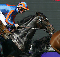First time past--High Chaparral, #3, and Falbrav, #8.  Breeders' Cup Turf.  © 10/03 Barbara D. Livingston.