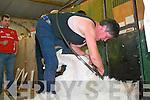 Breda Lynch Bonane at the Top of Coom Shearing last Sunday.