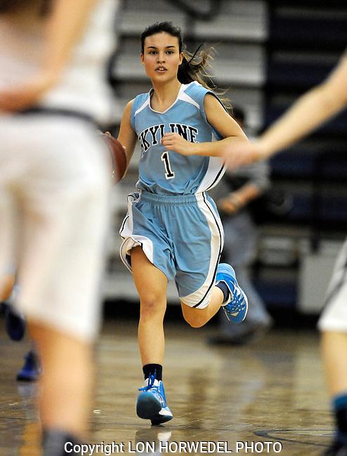 Skyline High School at Saline High School, girl's basketball, Friday, January 17, 2014.