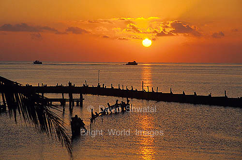 The sun rises over a pier as witnessed by two ferry boats a palm branch in Cancun Mexico