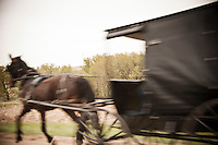 An Amish horse-drawn carriage is a blur of motion as it travels a rural road in Wisconsin's Driftless Area near VIroqua.