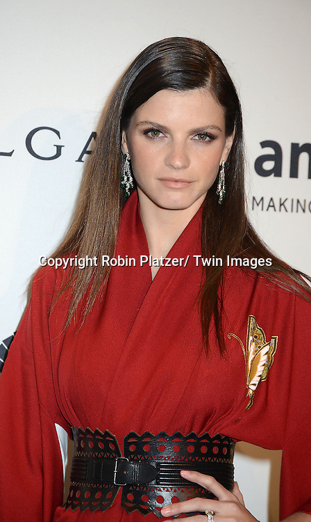 Jeisa Chiminazzo attends the amfAR New York Gala on February 5, 2014 at Cipriani Wall Street in New York City.