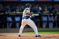 Canisius College Golden Griffins designated hitter Christ Conley (13) squares to bunt during the second game of a doubleheader against the Michigan Wolverines on February 20, 2016 at Tradition Field in St. Lucie, Florida.  Michigan defeated Canisius 3-0.  (Mike Janes/Four Seam Images)