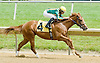 Chasing Gold winning at Delaware Park on 6/4/12