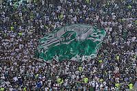 ATENÇÃO EDITOR: FOTO EMBARGADA PARA VEÍCULOS INTERNACIONAIS - SÃO PAULO, SP, 06 DE SETEMBRO DE 2012 - CAMPEONATO BRASILEIRO - PALMEIRAS x SPORT: Torcida do Palmeiras durante partida Palmeiras x Sport Recife, válida pela 22ª rodada do Campeonato Brasileiro no Estádio do Pacaembú. FOTO: LEVI BIANCO - BRAZIL PHOTO PRESS