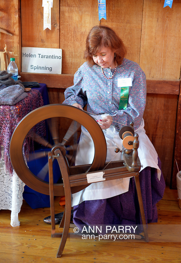 Old Bethpage, New York, USA. September 28, 2014.  HELEN TARANTINO is spinning wool at a spinning wheel in the Exhibition Hall at the 172nd Long Island Fair, a six-day fall county fair held late September to early October. A yearly event since 1842, the old-time festival is now held at a reconstructed fairground at Old Bethpage Village Restoration.