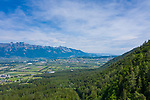 Forest, Wald, above Dux, Schaan, Liechtenstein