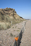 Dunwich beach and cliffs, North Sea coast, Suffolk, East Anglia, England