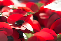 Pictured: poppies at the cenotaph in Swansea Friday 11 November 2016<br /> Re: Remembrance Day service at the Cenotaph in Swansea, south Wales, UK.