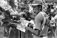"Oakland A's #1 draft choice Bill ""Sugar Bear"" Daniels signs autographs before game Sept 11,1971...(photo/Ron Riesterer)"