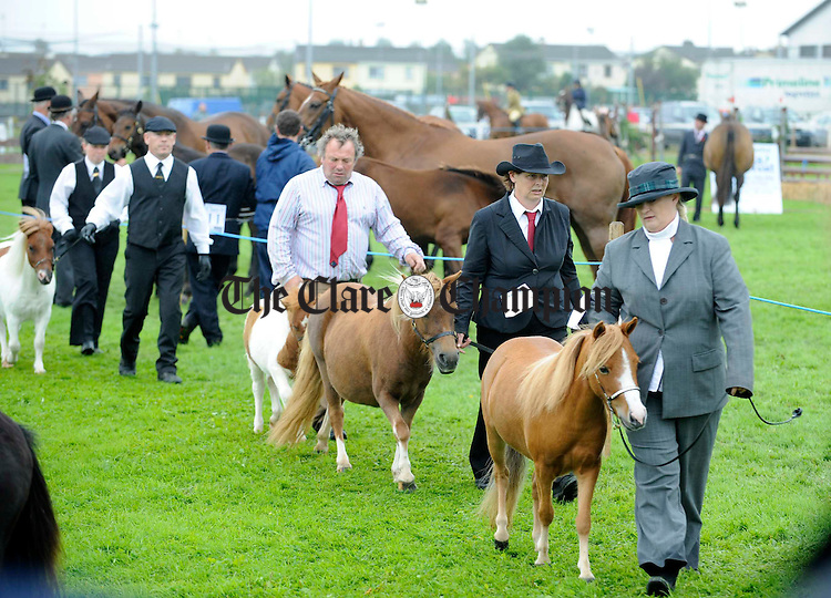 Competitors parade their miniature ponies at the Clare County Show in Ennis. Photograph by John Kelly.