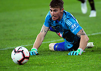 Phoenix keeper Oliver Sail in action during the A-League football match between Wellington Phoenix and Perth Glory at Westpac Stadium in Wellington, New Zealand on Saturday, 2 December 2018. Photo: Dave Lintott / lintottphoto.co.nz