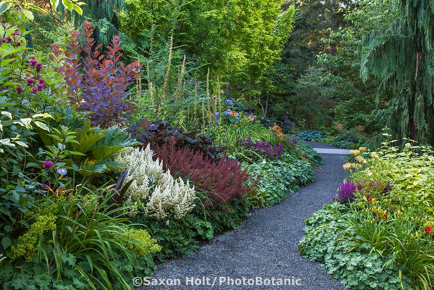 Gravel path between perennial borders PB08, PB09 at Bellevue Botanical Garden