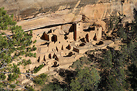 Aerial view of Cliff Palace, 13th century, a huge multi-storey Native American Puebloan dwelling, housing 125 people, with 23 kivas and 150 rooms, in Mesa Verde National Park, Montezuma County, Colorado, USA. The Cliff Palace is the largest cliff house in the park, possibly used for social and ceremonial purposes and is thought to be part of a larger community encompassing 60 pueblos and 600 people. It is made from sandstone blocks, mortar and wooden beams and was originally painted with earthen plasters. Mesa Verde is the largest archaeological site in America, with Native Americans inhabiting the area from 7500 BC to 13th century AD. It is listed as a UNESCO World Heritage Site. Picture by Manuel Cohen