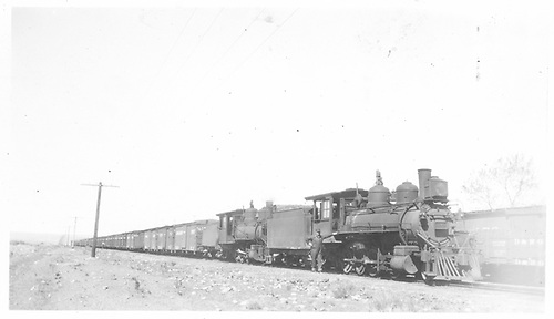 A D&amp;RG double-headed freight train is posing with crew.  A boxcar is on siding beside the lead engine and the long train is on a tangent, flat section of track, perhaps at Alamosa.<br /> D&amp;RG  Alamosa, CO  Taken by Werner, Charles A.