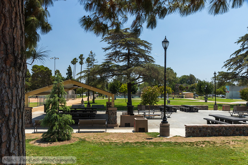 One of the picnic shelters at South Gate Park, framed by a large pine tree.  Multiple picnic tables are in the shade, while others sit open in the sun.