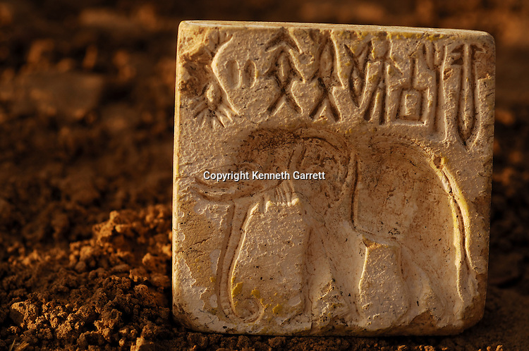 Elephant stamp, artifact; Oxus Civilization; Turkmenistan; Archaeology; Victor Sarianidi; Gonor Depe site; BMAC complex