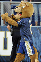 9 October 2010:  FIU's mascot, Roary, fires up the crowd in the fourth quarter as the FIU Golden Panthers defeated the Western Kentucky Hilltoppers, 28-21, at FIU Stadium in Miami, Florida.