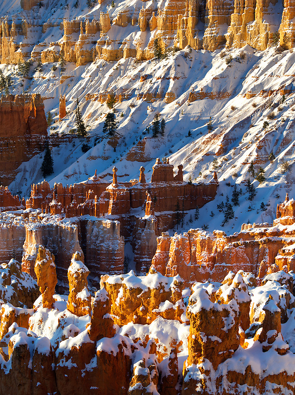 Snow on hoodoos. Bryce Canyon National Park, Utah.