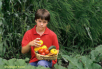 HS18-080z  Boy harvesting vegetable in garden    - tomato, cucumber, carrot, squash