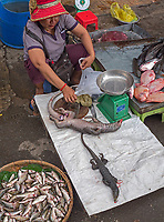 Exotic food In the streets of Phnom Penh, Cambodia