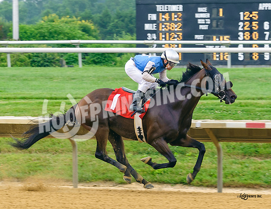 Racetrack Romance winning at Delaware Park on 7/9/16