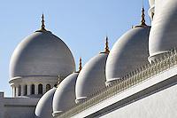Abu Dhabi Mosque domes closeup