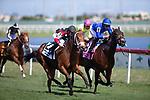 HALLANDALE BEACH, FL - JANUARY 25: Texas Edge, #2, ridden by jockey Flavien Prat, wins the World of Trouble Stakes on January 25, 2020 at Gulfstream Park in Hallandale Beach, Florida. Kaz Ishida/Eclipse Sportswire/CSM