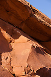 These ancient  Native American petroglyphs near the River House Ruin by the San Juan River are about 1000 years old.  Shash Jaa Unit - Bears Ears National Monument, Utah.