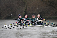 Crew: 3 - RGS Worcester - NOV.4x-<br /> <br /> Head of the Severn (University of Worcester) 2017<br /> <br /> To purchase this photo, or to see pricing information for Prints and Downloads, click the blue 'Add to Cart' button at the top-right of the page.