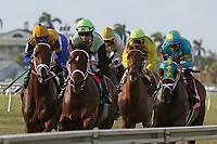HALLANDALE BEACH, FL - MARCH 31:   Argentine Bred #3 Hi Happy with jockey Luis Saez on board (far left, gold cap), wins the Pan American Stakes GII at Gulfstream Park on March 31, 2018 in Hallandale Beach, Florida. (Photo by Liz Lamont/Eclipse Sportswire/Getty Images)