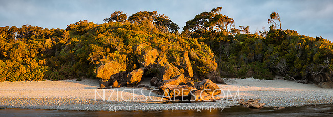 Coastal scene at under setting sun at Ship Creek with rock rofmation and native forest, West Coast, South Westland, UNESCO World Heritage Area, New Zealand, NZ