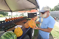 NWA Democrat-Gazette/FLIP PUTTHOFF <br />SIGNS OF THE SEASON<br />Jake Kettner of Sulphur Springs shows Wednesday Sept. 12 2018 a warty pumpkin, one of the varieties he sells at his vegetable stand along Arkansas 72 in Hiwasse. Kettner has mums, pumpkins and fall items for sale as autumn approaches. Autumn begins on Sept. 22.