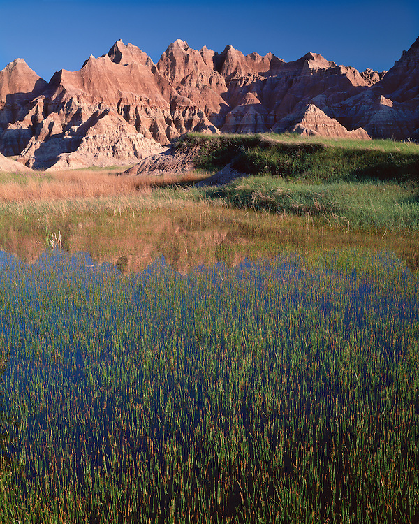 Reflections in a pond in early spring; Badlands National Park, SD