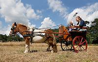 Leusden -  De Stichting Behoud Oude Werktuigen organiseert de jaarlijkse Oogstdag op landgoed Den Treek.  Pony trekt dresseerkar
