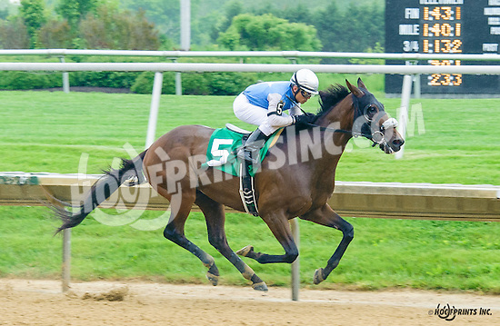 Racetrack Romance winning at Delaware Park on 5/21/16