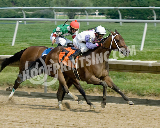 Seneca Summer winning at Delaware Park on 8/1/09