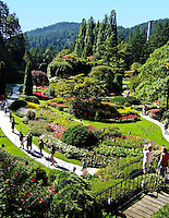 Victoria's Butchart Gardens features several garden spaces, this one situated in a historic quarry, pictured here on Friday, 9/9/11, in Victoria, BC, Canada, on Vancouver Island