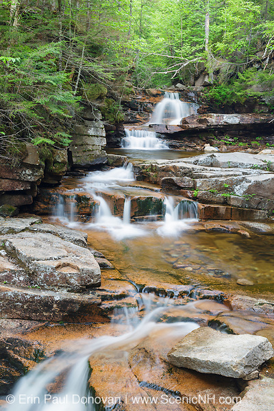 Bemis Brook Falls along Bemis Brook in Harts Location, New Hampshire USA during the spring months. This area is part of Crawford Notch State Park.
