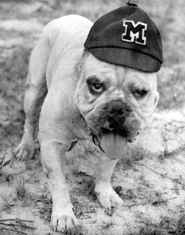 Bully with Ole Miss Beanie in 1930s <br />