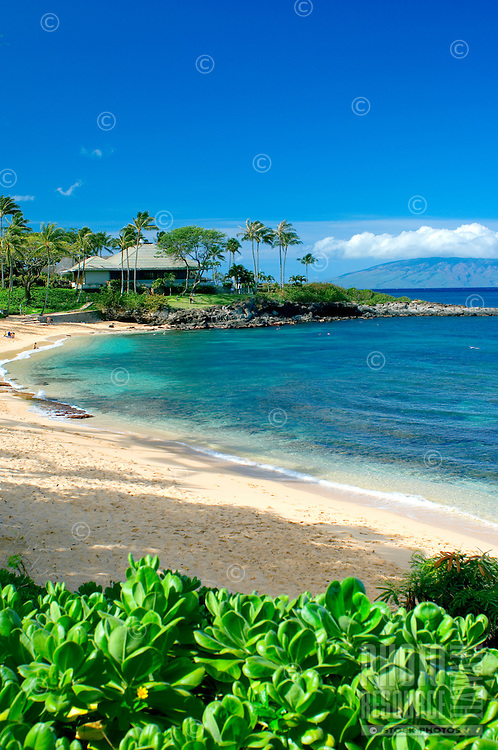 "Some regard Maui's Kapalua Bay as the ""world's best"" or ""America's best"" beach."