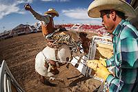 Nacional  Rodeo2016