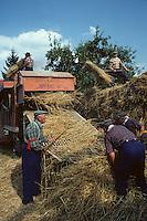 Europe/France/Limousin/23/Creuse/Env Crozant/Saint-Sébastien: Fête de la batteuse (Photo d'Archive: 1990)
