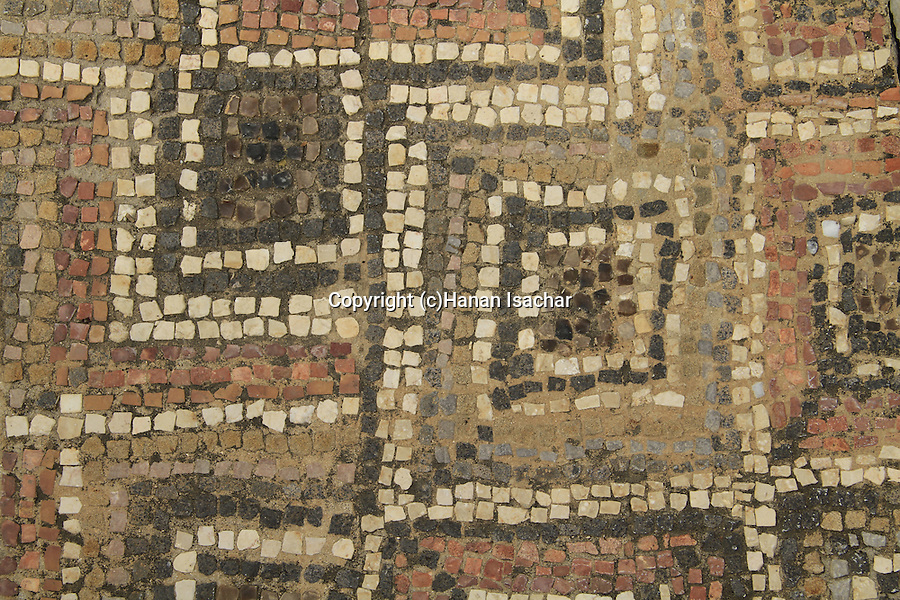 Israel, Beth Shean valley, a portion of the mosaic floor from the 4th-7th centuries Synagogue of Hurvat Parva, on display in Kibbutz Ein Hanatziv