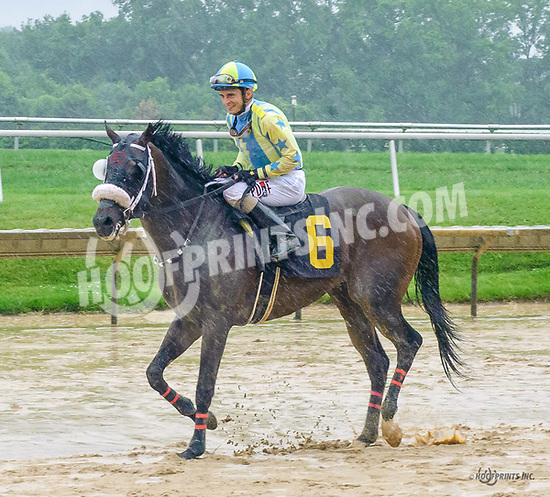 Patriotic Endeavor winning at Delaware Park on 7/6/17