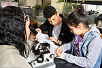 Education high school classroom science class girl using microscope as two classmates discuss lab